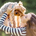 banner cachorro beijo