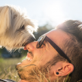 cachorro e tutor felizes