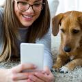 dog-app-mobile-1