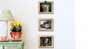 gato decoração