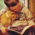 amizade gato e garoto