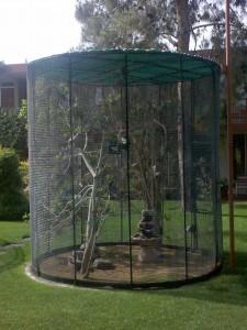 hotel-bird-cage1