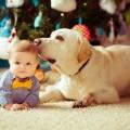 Little baby boy with  dog lying on the floor