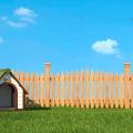 Portal_Refúgio-e-confort-a-importância-da-casinha-do-cachorro-e-como-fazer-uma-boa-escolha