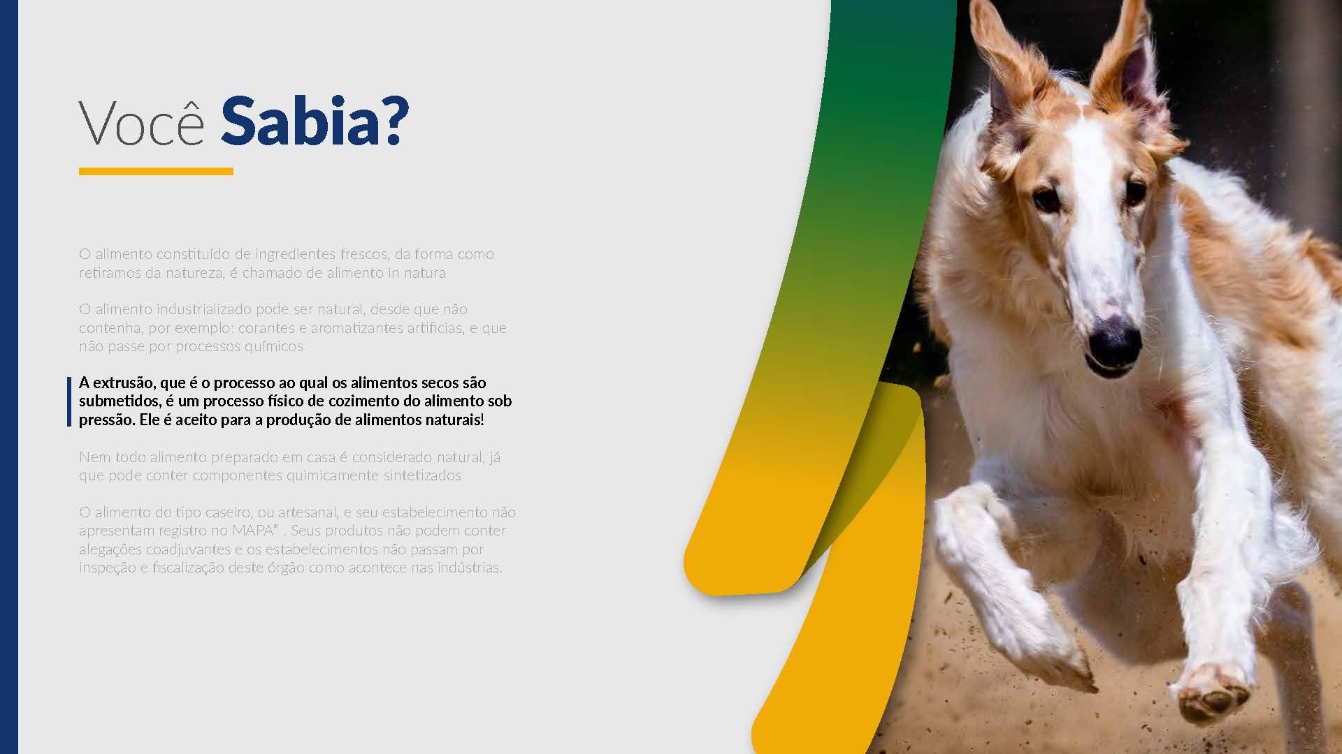 abinpet-apresentacao-alimentos_Página_11