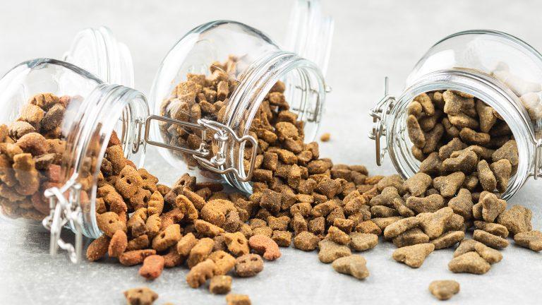 Além do seu pet, mais alguém adora o pet food: os insetos. Mas é fácil evitar que eles apareçam!