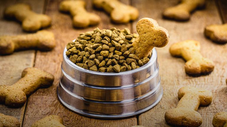 Não erre na alimentação do seu pet. Na dúvida, ofereça pet food de qualidade!